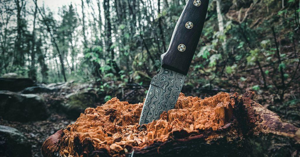 Pocket Knife in Stump